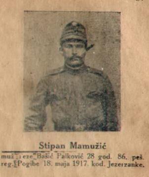 MAMUZSIC 60
